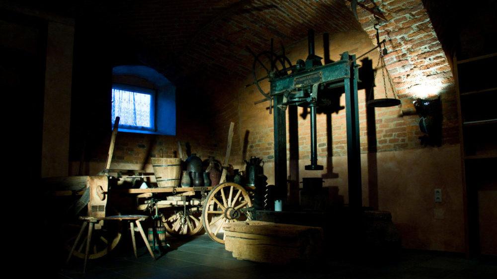 kürbis kernöl museum kremsner